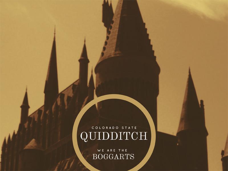 Quidditch quidditch