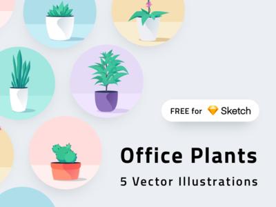 Office Plants for Sketch dracaena aloe cactus mobile ui vector sketch freebie free illustration plants plant