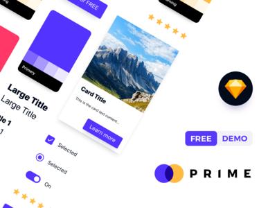 Prime Design System FREE Demo