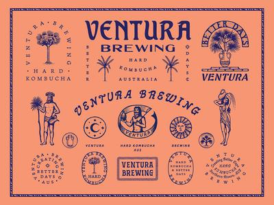Ventura Brewing / Creating Better Days graphic custom type brand design branding illustration tropical type typography hard kombucha kombucha