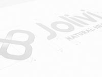 Rebranding Study symmetry logo rebranding