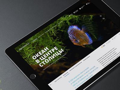 Second Concept For Moskvarium homepage promo oceanarium web design hero image fish
