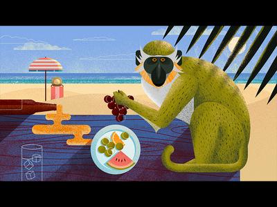 Bajan Green Monkey