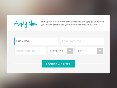 Apply Now. ui interface form button register ux simple light input select
