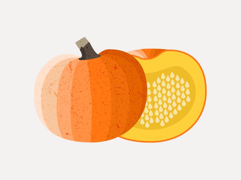Pumpkin (Squash) seeds texture infographic design illustration icon gourd squash pumpkin