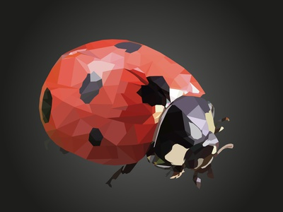 Ladybug (Polygonal Art) art polygonal polygon gradient vector illustration design artwork