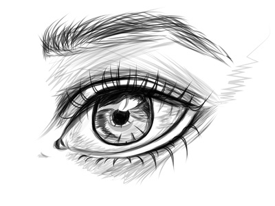 Detailed Eye Sketch sketch art shading vector illustration design artwork eyes eye