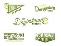 Doylestown Produce Logo Design Concepts