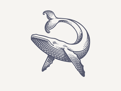 Happy Whale process reject nautical sea whale branding design logo illustration