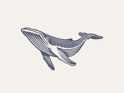 Whale design branding logo bw illustration