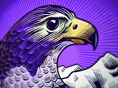 Heroic beasts (3) falcon scratchboard illustration