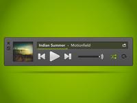 Spotify Mini Player