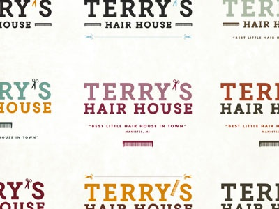 Terry's Hair House Logo Options logo haircut color options