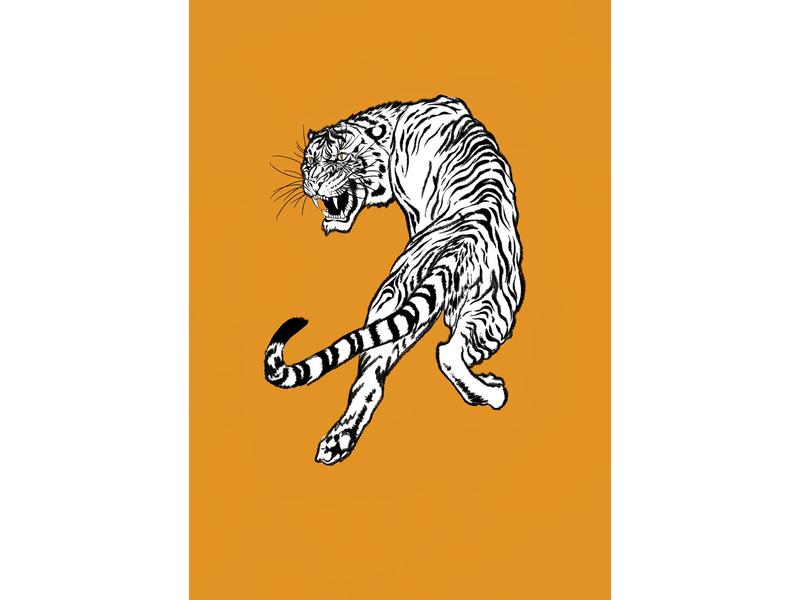 tiger vector illustration design