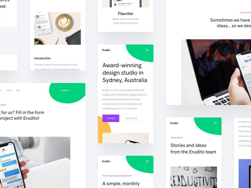 Erudito Website Design erudito website landing homepage colour agency studio creative design award winning sydney australia