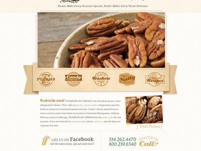 Tucker Pecan Website website illustrations icons pecans texture
