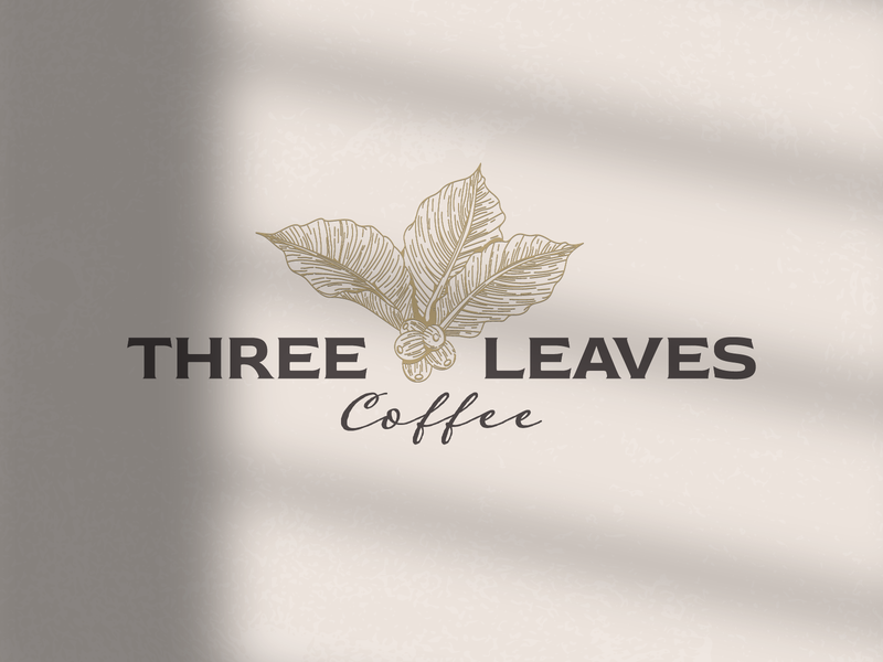 Three Leaves Coffee Shop Logo restaurant logo striped lines outline coffee leaves coffee tree coffee beans coffee shop coffee logo logo vector design logo template icon vintage logo retro logo logo design logos logo
