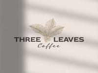 Three Leaves Coffee Shop Logo restaurant logo striped lines outline coffee leaves coffee tree coffee beans coffee shop coffee logo logo vector design logo template icon vintage logo retro logo logo design logos logo