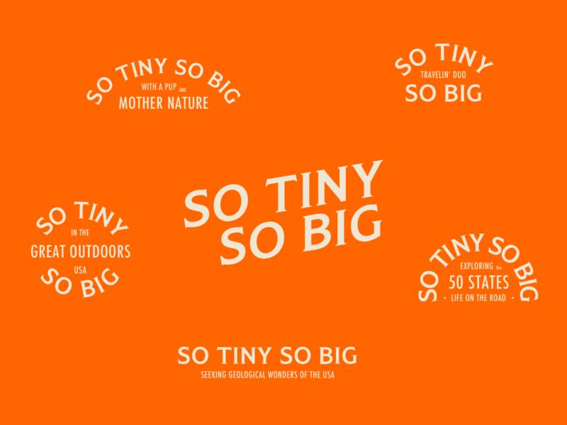 So Tiny So Big Explorations typography logotype logos branding