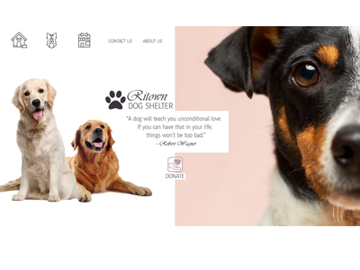 Dog Shelter Homepage UI design web ui design
