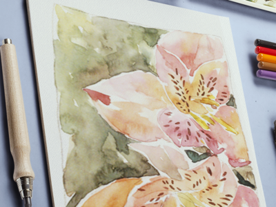 Lily watercolor drawing sketch