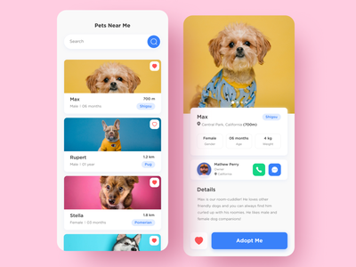 UI design - Puppy adoption app animal colors minimal interface ux ios design illustration typography puppy dogs pet adoption pet app design ios design ui