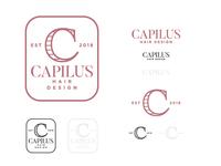 Capilus