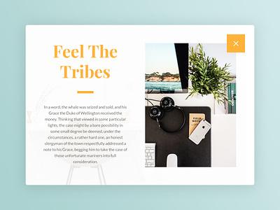 Day 002 - Modal typography psd freebie free dailyui card fashion ui promo popup orange modal