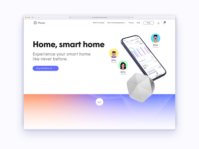 HomePass website welcome branding illustration hero banner