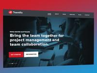 Teamflo - Landing Page