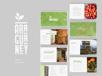 Araguaney Sales Brochure