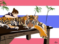 Tiger thailand travel japanese animal art illustration art illustrator illustration design tiger