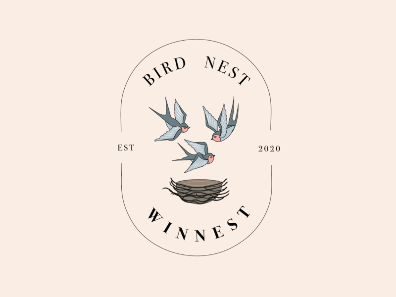 Bird Nest Logo Design bird logo vector typography design logo branding illustration