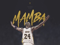 Thank you, Mamba!