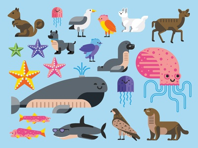 Aminals  jelly fish tyler stockdale killer infographics fish eagle seal shark starfish rabbit dog squirrel octopus