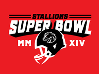 Stallions Super Bowl