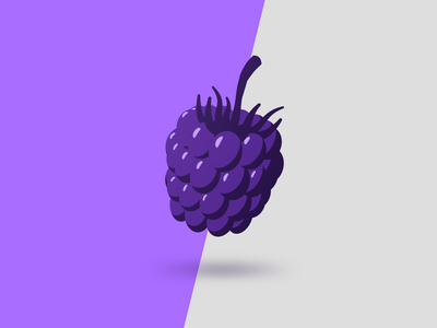 Blackberry simple blackberry 2d to 3d flat design symbol fruit illustration
