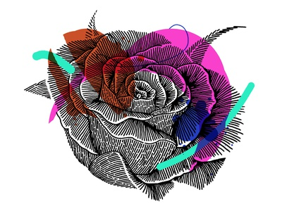 Fun Color Floral style chicago art icon color texture drawing illustration design