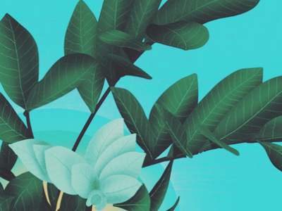 Fresh Leaves digital painting designer motion illustration