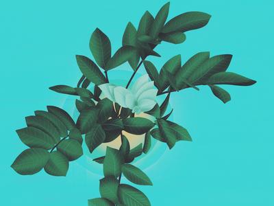 New life - full shot motion designer digital illustrations