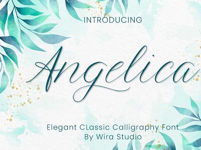 Angelica - Script Font branding modern feminine elegant chic logo font wedding font script calligraphy