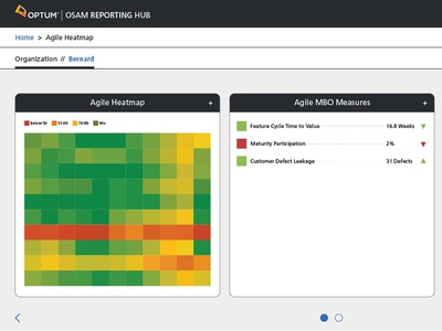 Osam (Optum Scalable Agile Method) Reporting Hub