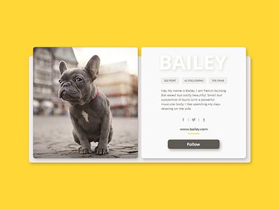 Daily UI #6 User Profile website web minimal ui daily shadow profile dailyui card yellow