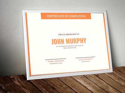 Certificate of Completion illustration design certificate design
