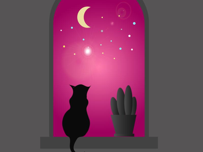 cat and moon illustrator art vector illustration design