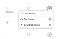 Backup Options Popover