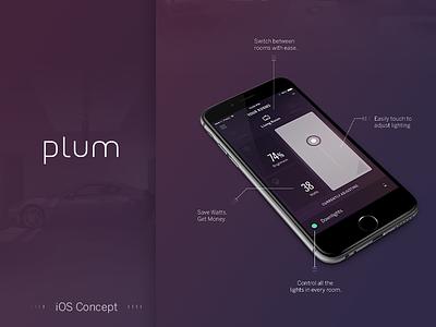 Plum Lighting - Concept design funsize fnsz lighting home automation purple clean minimal austin auto touch