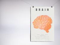 Brain//Poster