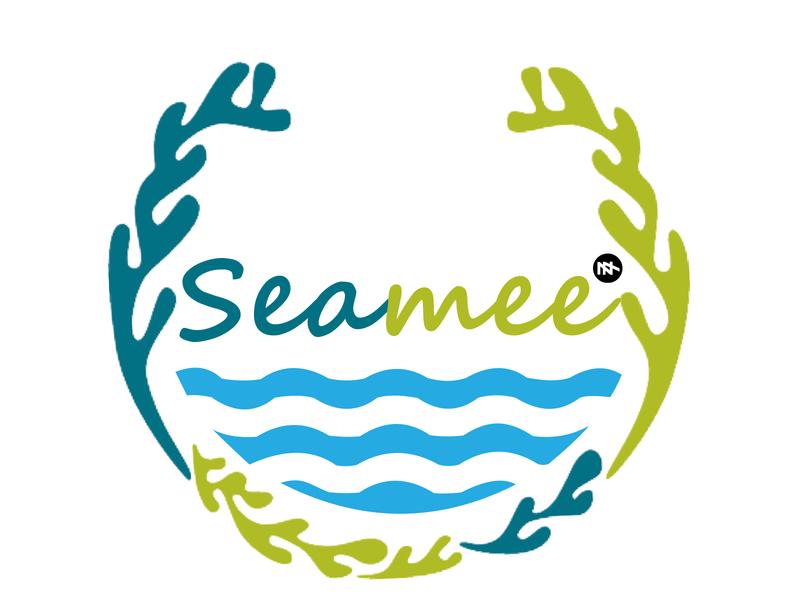 SeaWeed typography logo design logo minimal vector logotype branding illustration flat design