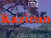 Kaziranga - Landing page concept